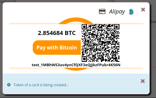 Bitcoin payment form