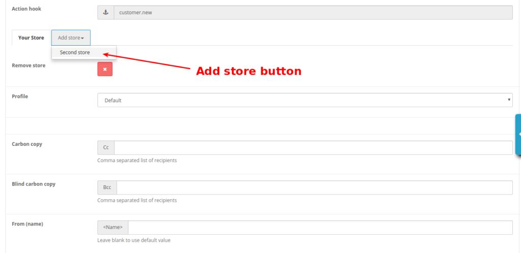 Email Manager. Store tab